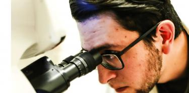 En este momento, el proyecto Bifrost Biotechnologies busca reducir sus tiempos de proceso enfocándose en el epitelio de la córnea