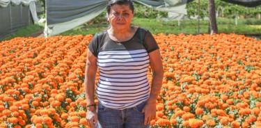 Elisa Xolalpa en sus campos de cultivo de cempasúchiñ